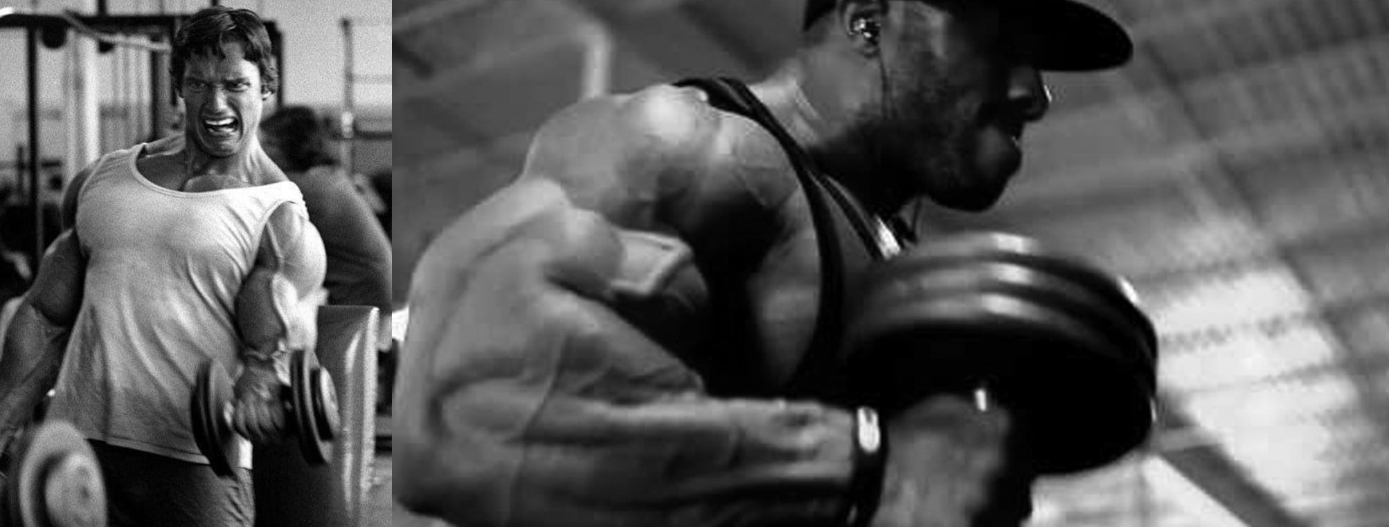 Hammer Curls vs Bicep Curls Build Bigger Arms Quickly Featured image